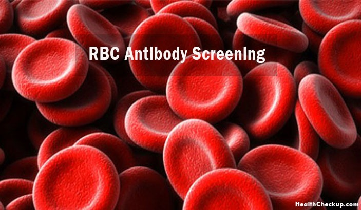 What is RBC Antibody Screen Blood Test? Procedure and Results of Test