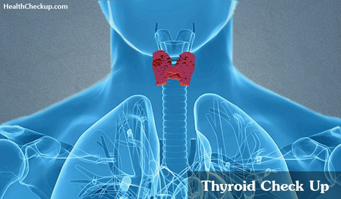 Thyroid Function Tests and results-normal values