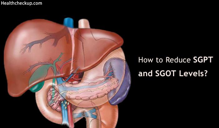 How To Reduce Sgpt And Sgot Levels Methods Normal Range