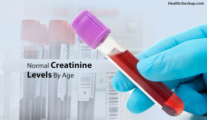 Normal Creatinine Levels By Age