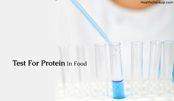 How to Test for Protein in Food