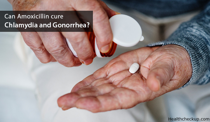 Can Amoxicillin cure Chlamydia and Gonorrhea?