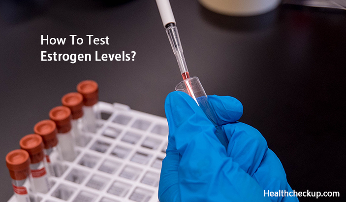 How To Test Estrogen Levels