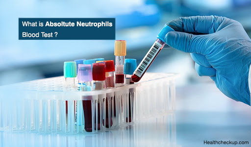 What Is Absolute Neutrophils Blood Test?
